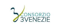 consorzio-3-venezie-verona-logo-partner-welfcare